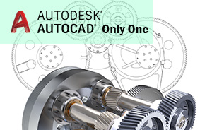 AutoCAD only one